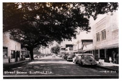 City of Bushnell, Florida